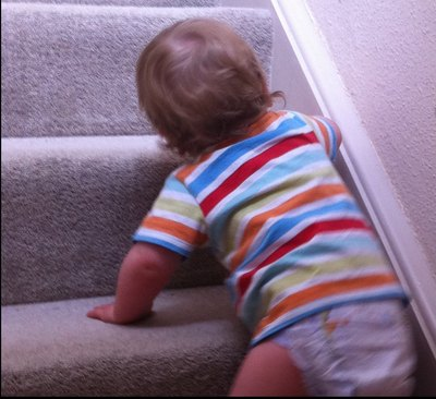 baby proof, safety, stairgate, fireguard, hazards, choking
